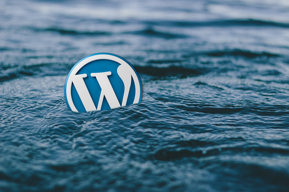 Costruzione sito web con wordpress