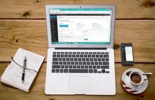 Strumento revisioni di WordPress